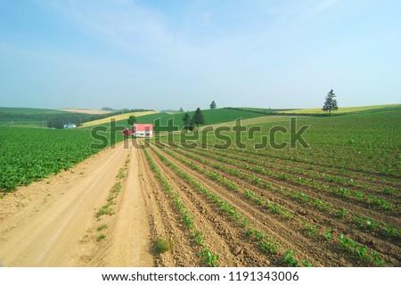 Beautiful rural landscape #1191343006