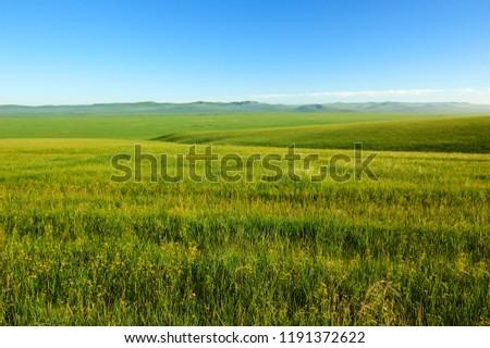 The Muzigler river valley of Hulunbuir grassland of China. Royalty-Free Stock Photo #1191372622