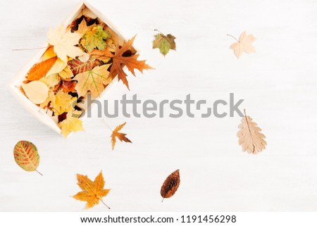 Autumn composition. Beautiful yellow leaves on white background wooden table. Autumn, fall, background. Flat lay, top view, copy space #1191456298