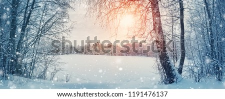 trees covered with snow on frosty evening. Beautiful winter panorama #1191476137