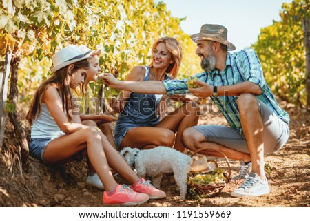 Beautiful young smiling family of four cutting grapes at a vineyard. #1191559669