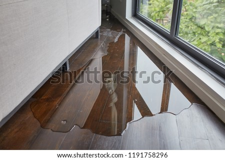 Water leaking and flooded on wood parquet floor. Room floor will damage after the water flooded. Royalty-Free Stock Photo #1191758296