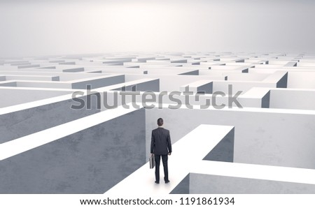Small businessman in a middle of a huge maze #1191861934