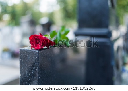 Rose on tombstone. Red rose on grave. Love - loss. Flower on memorial stone close up. Tragedy and sorrow for the loss of a loved one. Memory. Gravestone with withered rose #1191932263