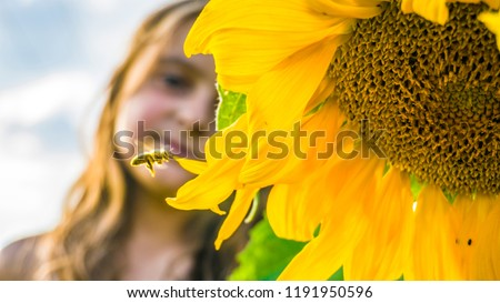 Blooming sunflower, flying bee and little girl. Flying bee to sunflower. #1191950596