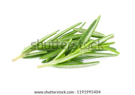 Rosemary isolated on white background #1191995404