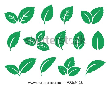 blue mint leaves set icons on white Royalty-Free Stock Photo #1192369138