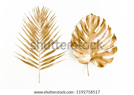 Gold tropical palm leaves Monstera on white background. Flat lay, top view minimal concept. #1192758517