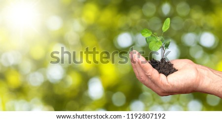 Human hands holding plants #1192807192