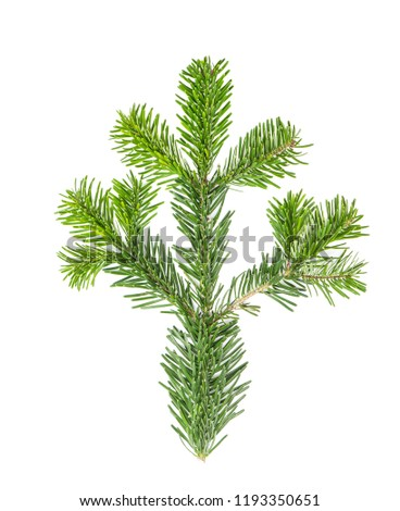 Spruce twigs. Branch of Christmas tree isolated on white background #1193350651