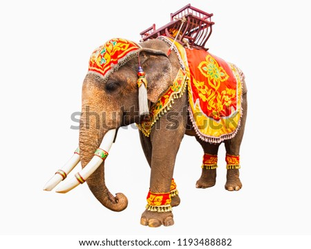 Elephant has beautiful and large isolated on white background. colorful painted elephant head ,Decorated elephants in Thailand. Royalty-Free Stock Photo #1193488882