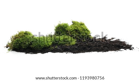 Green moss on soil, dirt pile, isolated on white background #1193980756