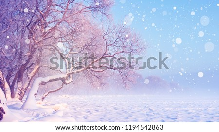 Winter landscape in snowfall. Christmas background. Frosty trees. Snowy winter scene. Winter fairytale. #1194542863