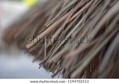 Thatch roof background, hay or dry grass background. #1194702553