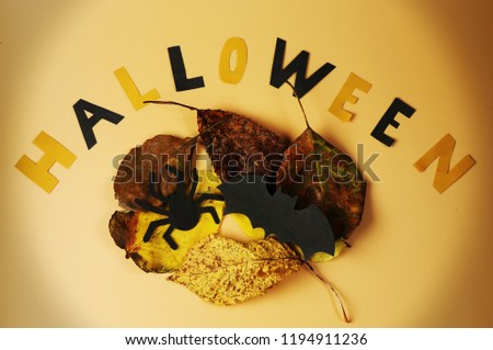 A writting happy halloween with autumn leaves, black spider and bat. Everyone warn. Halloween is here. Orange background #1194911236
