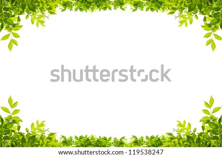 Green leaves border isolated on white background Royalty-Free Stock Photo #119538247