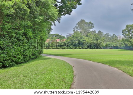 a texture of walk way and green field