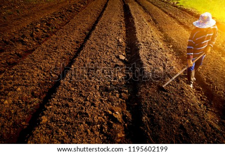 Agricultural worker with hoe.Handmade plowing farmer.Traditional agriculture. soft ligth in morning. #1195602199