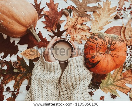 Hand holding warm coffee and pumpkins and colorful leaves top view. Stylish autumn flat lay. Hello fall. Cozy warm image #1195858198