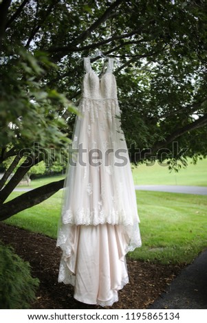 Ivory A-Line Wedding Dress Hanging from a Tree Branch - Wedding Gown with Lace Detail #1195865134