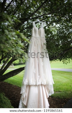Ivory A-Line Wedding Dress Hanging from a Tree Branch - Wedding Gown with Lace Detail #1195865161