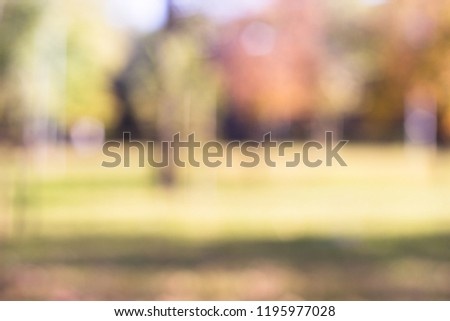 Outdoor park with tree and bokeh light, blur background #1195977028