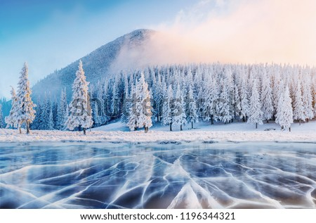 Cracks on the surface of the blue ice. Frozen lake in winter mountains. It is snowing. The hills of pines. Carpathian Ukraine Europe. Royalty-Free Stock Photo #1196344321