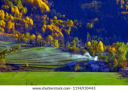 gorgeous autumn photos.artvin/savsat #1196930443