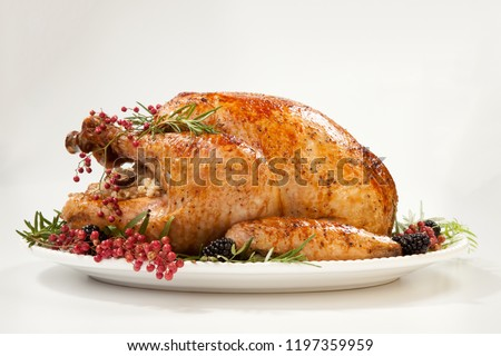 Thanksgiving pepper roasted turkey garnished with blackberry and pink peppercorn on white.