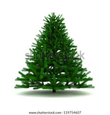 pine tree - 3d render on white #119754607