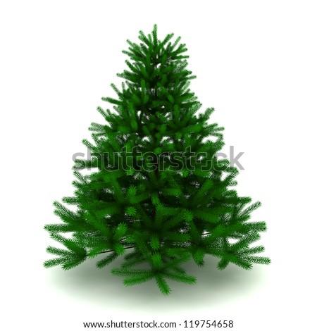 pine tree - 3d render on white #119754658