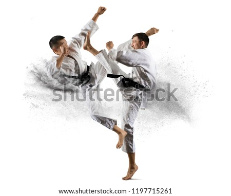 Martial arts masters, karate practice. Isolated background Royalty-Free Stock Photo #1197715261