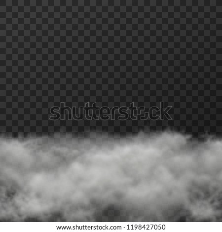 Vector illustration of white smoky clouds  on transparent background #1198427050