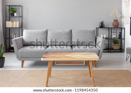 Wooden table on carpet in front of grey sofa in minimal living room interior with plant. Real photo #1198454350