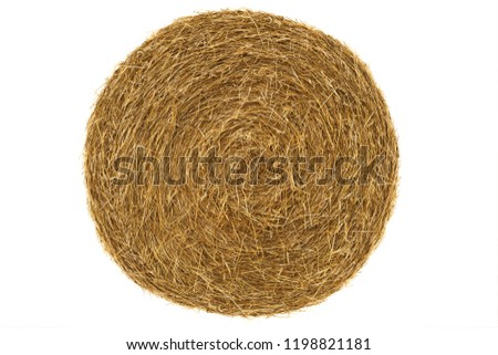 Round hay bale isolated on a white background #1198821181
