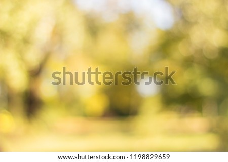 Autumn trees in the public park out of focus, natural bokeh background  #1198829659