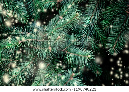 Christmas Background with falling white  snow and fir tree branches. Merry Christmas Festive Card. Copy space. #1198940221