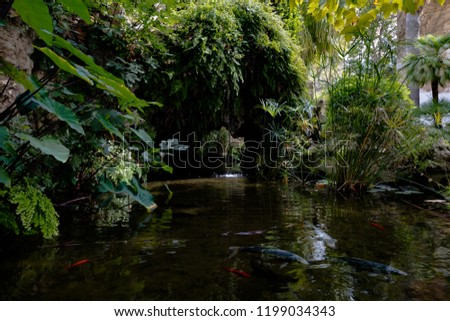 Pond with fish in the garden of Alfabia, Mallorca, Spain #1199034343