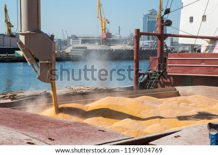 Corn in bulk carrier hold. Casting hold of corn. Elevator crane loads ship bulk carrier with corn #1199034769