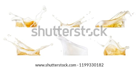 beer splashes collection isolated on white background #1199330182