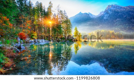 autumn sunrise of Hintersee lake. Beautiful scene of trees near turquoise water of Hintersee lake. Location: resort Ramsau, National park Berchtesgadener Land, Upper Bavaria, Germany Alps, Europe #1199826808