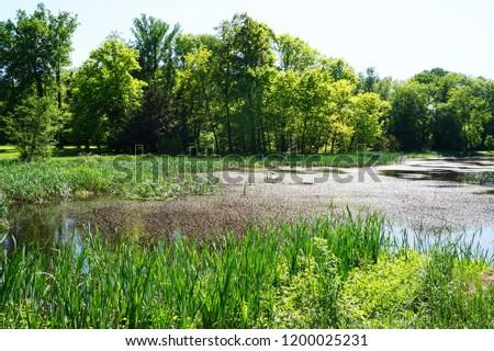 small lake near Radun castle as nice  moravia landscape #1200025231