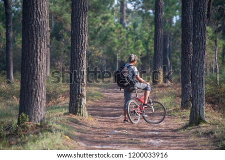 The tourist hiking on the pathway in the high mountain forest #1200033916