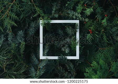 2019 Merry Christmas and happy New Year background with evergreen tree branches creative layout. Nature flat lay concept. #1200225175