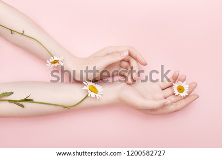 Fashion hand art chamomile natural cosmetics women, white beautiful chamomile flowers hand with bright contrast makeup, hand care. Creative beauty photo girl sitting at table, contrasting background #1200582727