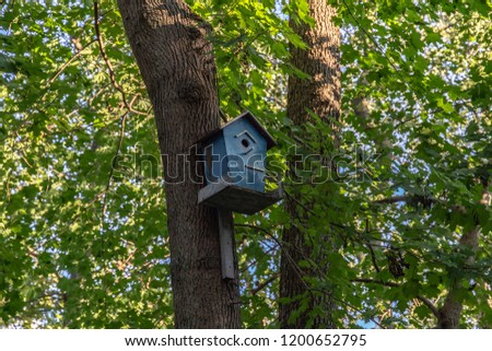 birdhouse on a tree in the forest #1200652795