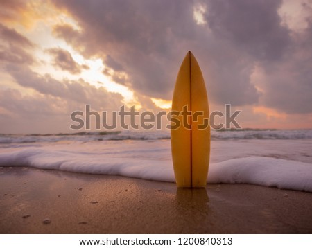surfboard on the beach in sea shore at sunset time with beautiful light. water sport background #1200840313