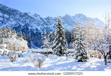 Winter snow mountain forest landscape. Snow covered trees on winter snow mountains. Winter mountain snow forest scene. Winter snow mountain forest trees view #1200957325