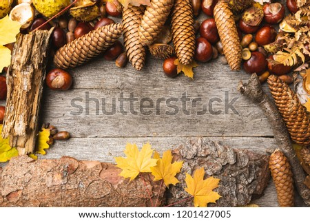 Autumn arrangement, concept still life with chestnuts, cones, acorns, leaves, bark on wooden background. Seasonal frame from autumn harvest. Flat-lay visualization with copy space. Table top view. #1201427005