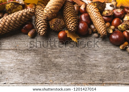 Autumn arrangement, concept still life with chestnuts, cones, acorns, leaves, bark on wooden background. Seasonal frame from autumn harvest. Flat-lay visualization with copy space. Table top view. #1201427014